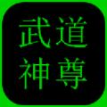 武道神尊文字游戏破解版