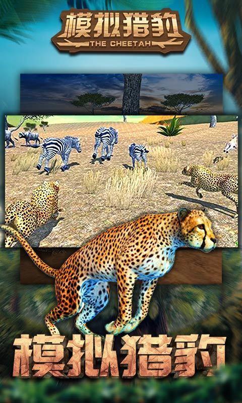 模拟猎豹图3