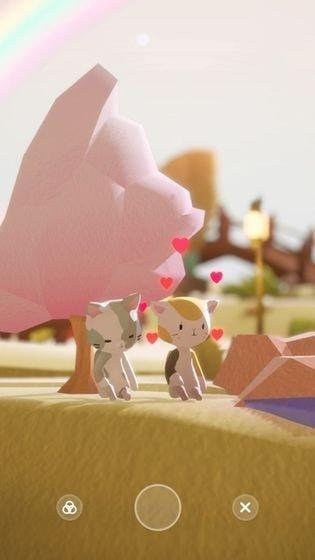 亲爱的猫咪图3