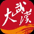大武汉app官方版