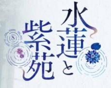 水莲与紫苑汉化版